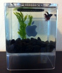 mac-mini-fish-aquarium-2